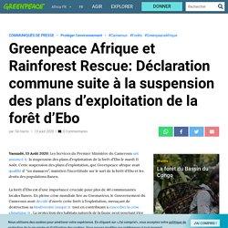 Greenpeace Afrique et Rainforest Rescue: Déclaration commune suite à la suspension des plans d'exploitation de la forêt d'Ebo par Tal Harris 13 août 2020