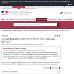 Déclaration des mouvements de main-d'œuvre (DMMO) - professionnels