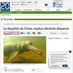 Le dauphin de Chine, espèce déclarée disparue