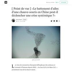[ Point de vue ] «Le battement d'ailes d'une chauve-souris en Chine peut-il déclencher une crise systémique ?»