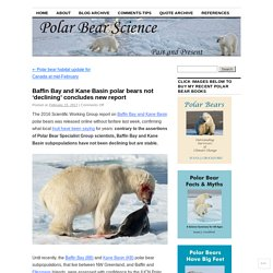 Baffin Bay and Kane Basin polar bears not 'declining' concludes new report