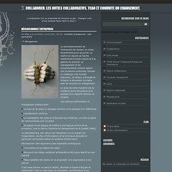 Décloisonner l'entreprise - Collaborer: Les Outils Collaboratifs, TCAO et conduite du changement.