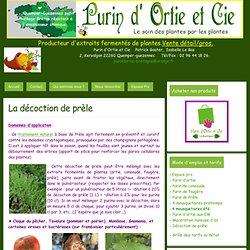 La décoction de prèle - purin d'ortie et cie