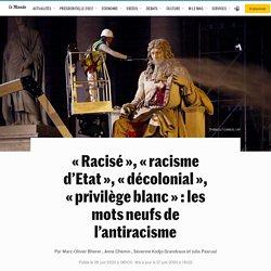 «Racisé», «racisme d'Etat», «décolonial», «privilège blanc»: les mots neufs de l'antiracisme