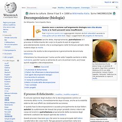 Decomposizione (biologia)