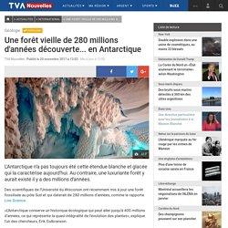 Une forêt vieille de 280 millions d'années découverte... en Antarctique