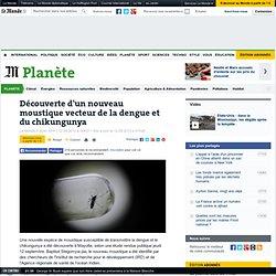 AFP12/09/13Découverte d'un nouveau moustique vecteur de la dengue et du chikungunya (Mayotte)