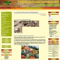 A LA DÉCOUVERTE DES CUCURBITACÉES - Terra Botanica Thouars