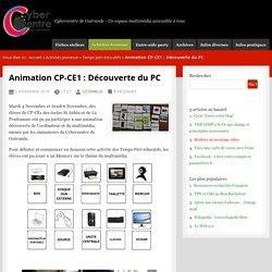 Animation CP-CE1 : Découverte du PC