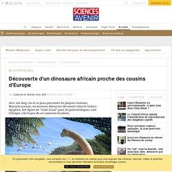 decouverte-d-un-fossile-de-dinosaure-africain-proche-des-cousins-d-europe_120338