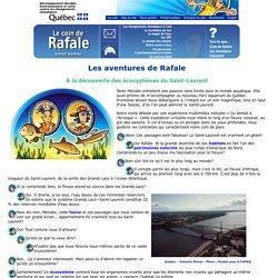 Le coin de Rafale : À la découverte des écosystèmes du Saint-Laurent