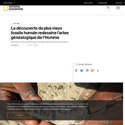 La découverte du plus vieux fossile humain redessine l'arbre généalogique de l'Homme