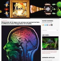 Découverte de la région du cerveau qui permet de faire la différence entre l'imagination et la réalité