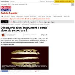 """Découverte d'un """"instrument à corde"""" vieux de 40.000 ans !"""