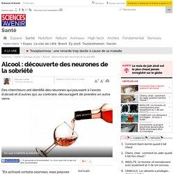 Alcool : découverte des neurones de la sobriété