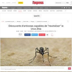 "Découverte d'anticorps capables de ""neutraliser"" le virus Zika"