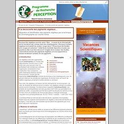 À la découverte des pigments végétaux… - PERCEPTION