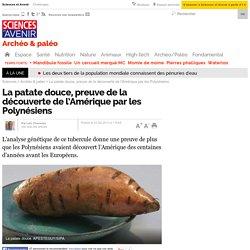 La patate douce, preuve de la découverte de l'Amérique par les Polynésiens - 27 février 2013