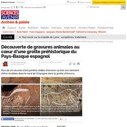 Découverte de gravures animales au cœur d'une grotte préhistorique du Pays-Basque espagnol