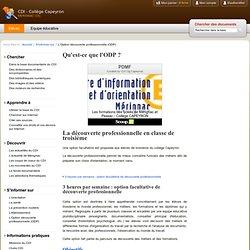 L'Option découverte professionnelle (ODP)