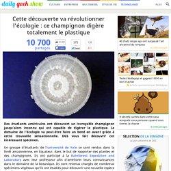 Cette découverte va révolutionner l'écologie : ce champignon digère totalement le plastique