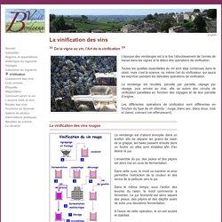 Vinification des vins de Bordeaux