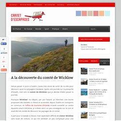 A la découverte du comté de Wicklow - Carnet d'escapades
