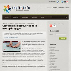 Cerveau : les découvertes de la neuropédagogie - Instit.info