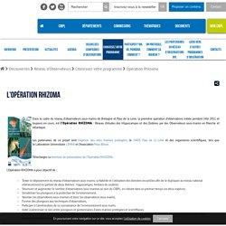 Accueil < Découvertes < Réseau d'Observateurs < Choisissez votre programme < Opération Rhizoma