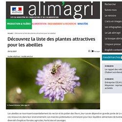 Découvrez la liste des plantes attractives pour les abeilles