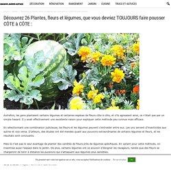 Découvrez 26 Plantes, fleurs et légumes, que vous devriez TOUJOURS faire pousser CÔTE à CÔTE :