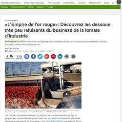 «L'Empire de l'or rouge»: Découvrez les dessous très peu reluisants du business de la tomate d'industrie