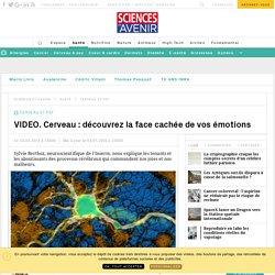 VIDEO. Cerveau : découvrez la face cachée de vos émotions - Sciencesetavenir.fr