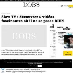 Slow TV : découvrez 6 vidéos fascinantes où il ne se passe RIEN