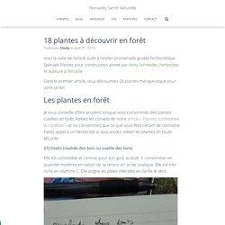 18 plantes à découvrir en forêt