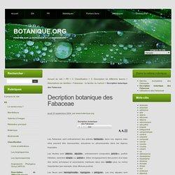Decription botanique des Fabaceae