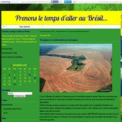 Décryptage de la déforestation par Greenpeace - Prenons le temps d'aller au Brésil...