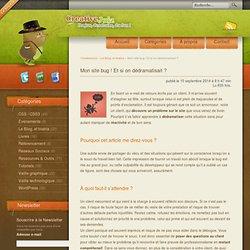 Mon site bug, et si on dédramatisait (gestion de projet) - Le Blog, et blabla