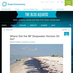 Where Did the BP Deepwater Horizon Oil Go?