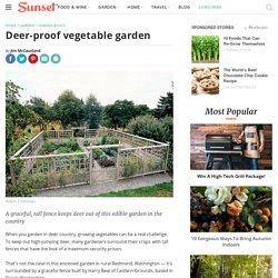 Deer-Proof Garden Fence Ideas