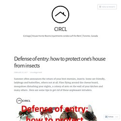 Defense of entry: how to protect one's house from insects – CIRCL