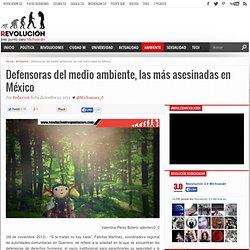 Defensoras del medio ambiente, las más asesinadas en México