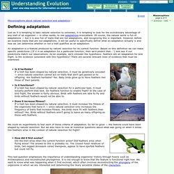Defining adaptation