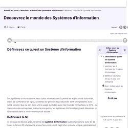 Définissez ce qu'est un Système d'Information - Découvrez le monde des Systèmes d'Information