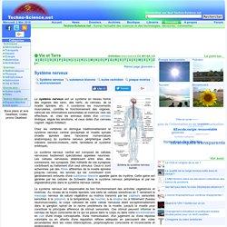 Définition Système nerveux - Encyclopédie scientifique en ligne