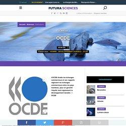 Définition du terme OCDE