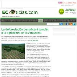 La deforestación perjudicará también a la agricultura en la Amazonia