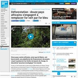 Déforestation : douze pays africains s'engagent à remplacer l'or vert par l'or bleu