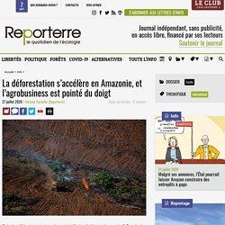 La déforestation s'accélère en Amazonie, et l'agrobusiness est pointé du doigt