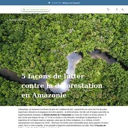 5 façons de lutter contre la déforestation en Amazonie